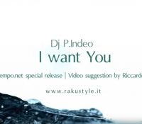 OUTNOW ! I want you la special release del dj producer P.Indeo è disponibile su YouTube
